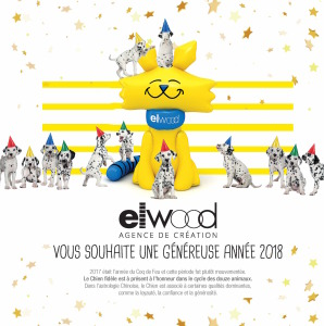 voeux_Elwood_2018_20x20-12-2017_hdef