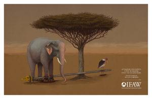 elephant-1024x668