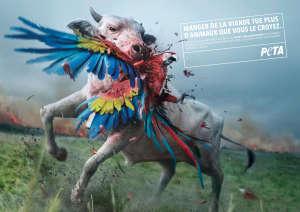 PETA-Fr_Amazonie-en-feu